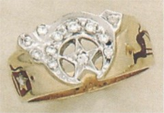 SHRINE RING 10KT or 14KT GOLD .27CT Total Diamond Weight #1